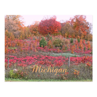 """""""MICHIGAN HILLSIDE AFLAME WITH COLOR"""" POSTCARD"""
