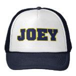 michigan logo style,esp for Joey Mesh Hats