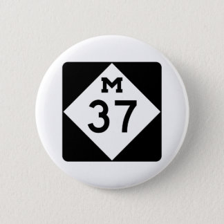 Michigan M-37 Button