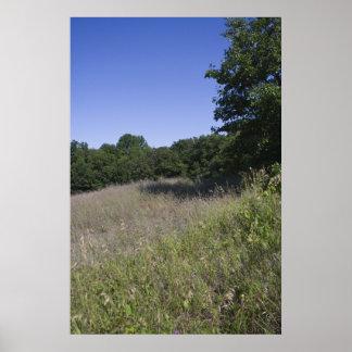 Michigan Meadow print