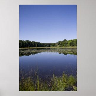Michigan Pond print