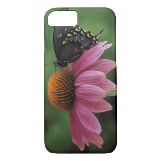 Michigan, Rochester. Spicebush Swallowtail Funda iPhone 7