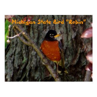 Michigan State Bird Robin Postcard