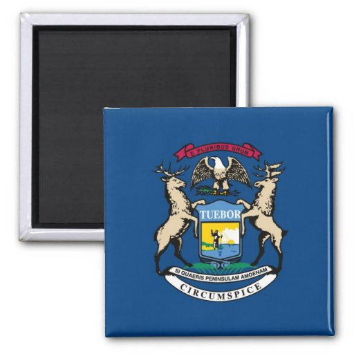 Michigan State Flag 2 Inch Square Magnet