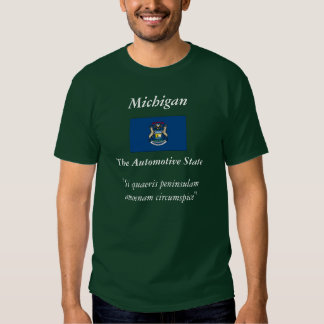 Michigan State Flag T Shirt