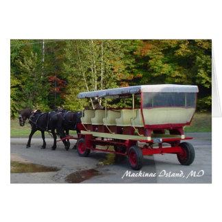 michigan_trip 024, Mackinac Island, MI Greeting Card