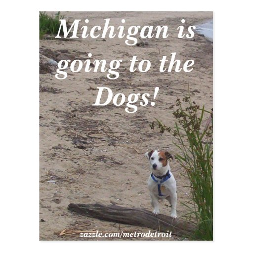 ¡Michigan va a los perros! Postal