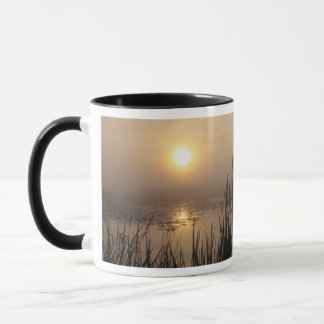 Michigan Wetland Sunrise Mug