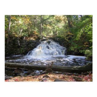 Michigan Wilderness Waterfall Postcard