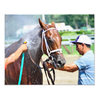 Michonne, 2 year old filly photographic print