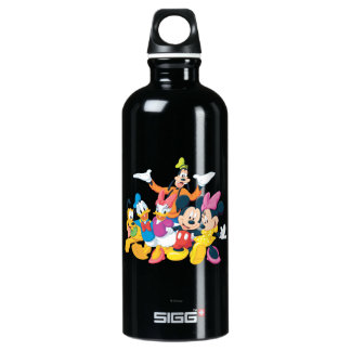 Mickey & Friends | Picture Perfect Water Bottle