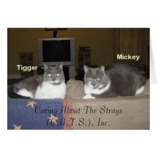 Mickey& Tigger Card