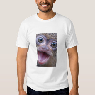 Mico the Mighty Marmoset T Shirt