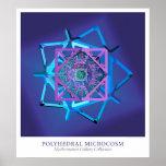Microcosmos polihédrico póster