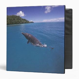 Micronesia, Palau Bottlenose dolphin Tursiops 2 Binder