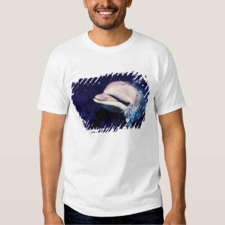 Micronesia, Palau Bottlenose dolphin Tursiops Shirt