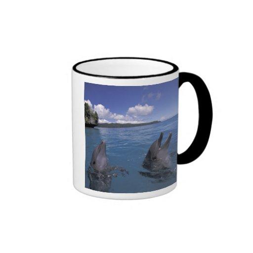 Micronesia, Palau Bottlenose dolphins Ringer Mug