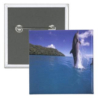 Micronesia, Palau Bottlenose dophin Tursiops Pinback Button