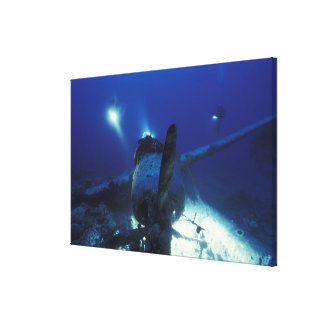 Micronesia, Palau, World Heritage Site. Divers Canvas Print