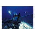 Micronesia, Palau, World Heritage Site. Divers Card