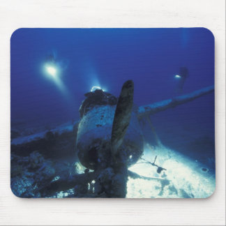 Micronesia, Palau, World Heritage Site. Divers Mouse Pad