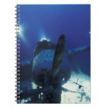 Micronesia, Palau, World Heritage Site. Divers Notebook