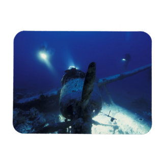 Micronesia, Palau, World Heritage Site. Divers Rectangular Photo Magnet