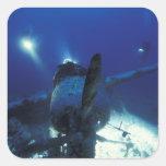 Micronesia, Palau, World Heritage Site. Divers Square Sticker