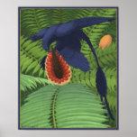 Microraptor Omnivory Poster