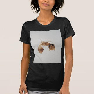 Microscope photo of an ant T-Shirt