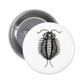 microscopic creature button