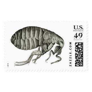 Microscopic flea postage