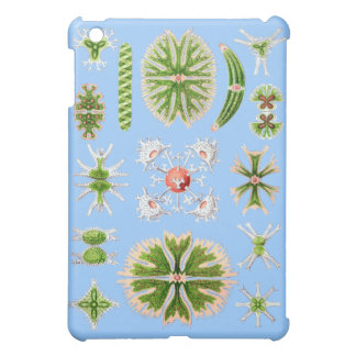 Microscopic green algae case for the iPad mini