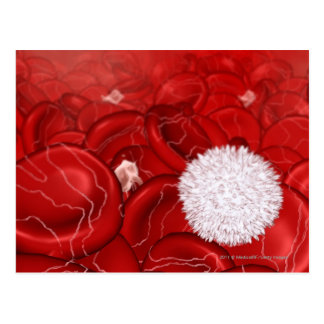 Microscopic look at blood cells postcard
