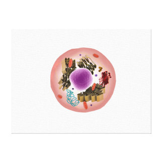 Microscopic View Of Animal Cell 1 Canvas Print