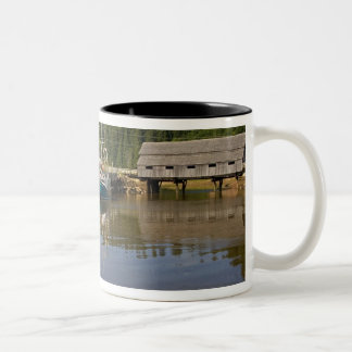 Mid tide at the Bay of Fundy at St. Martins, New Two-Tone Coffee Mug