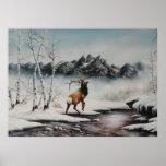 Mid winter Elk in snow Print