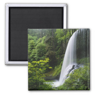 Middle North falls, Silver Falls State Park, 2 Inch Square Magnet