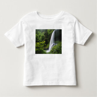 Middle North falls, Silver Falls State Park, Shirt