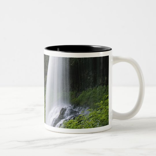 Middle North falls, Silver Falls State Park, Two-Tone Coffee Mug