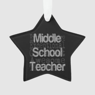 Middle School Teacher Extraordinaire Ornament