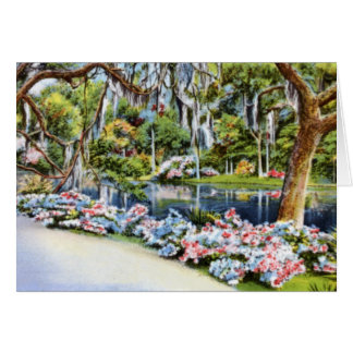 Middleton Garden Charleston South Carolina Cards