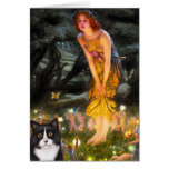 MidEve - Am SH black and white cat Greeting Cards