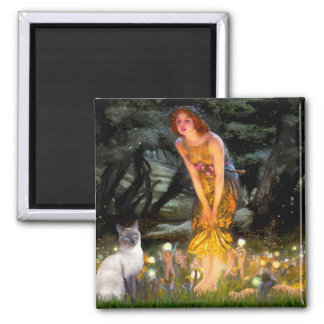 MidEve - Blue Point Siamese cat 2 Inch Square Magnet
