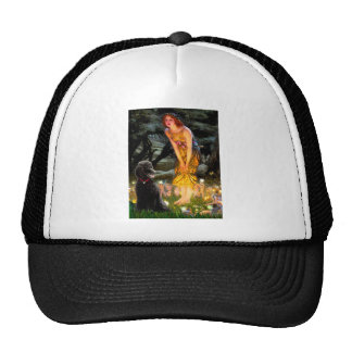 MidEve-Standard Black Poodle T Hats