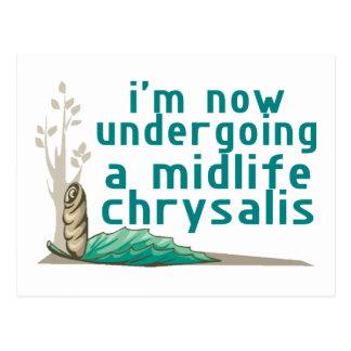 Midlife Chrysalis Postcards
