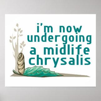 Midlife Chrysalis Poster