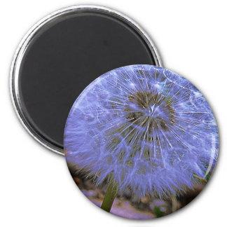 Midnight Ball 2 Inch Round Magnet