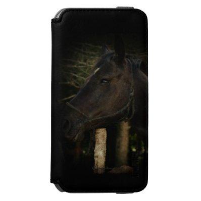Midnight Beauty-Black Stallion Horse iPhone 6/6S Wallet Case