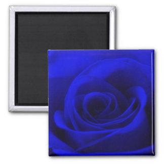 Midnight blue Rose Magnet